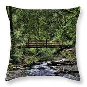 Swan Creek Park Throw Pillow