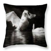 Swan Display Throw Pillow