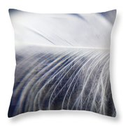 Swan Down Throw Pillow