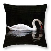 Swan Drinking Throw Pillow