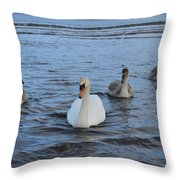 Swan Family At Sea Throw Pillow