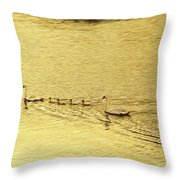 Swan Family Into The Sunset Throw Pillow