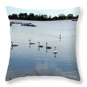 Swan Hangout Throw Pillow