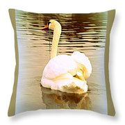 swan in the genus Cygnus Throw Pillow
