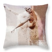 Swan Lake Dance  Throw Pillow