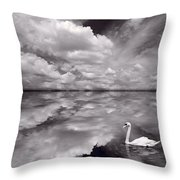 Swan Lake Explorations B W Throw Pillow