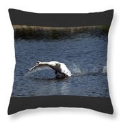 Swan Landing 3 Throw Pillow