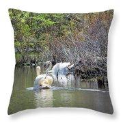 Swan Life Throw Pillow