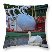 Swan Meeting Up With Some Friends Throw Pillow
