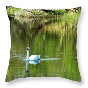 Swan On The Cong River Cong Ireland Throw Pillow