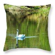 Swan On The Cong River Cong Ireland Throw Pillow