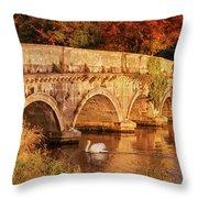 Swan On The Rye Water - Kildare, Ireland Throw Pillow