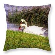 Swan Pair Warm Color Throw Pillow