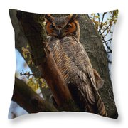 Swan Point Great Horned Owl Throw Pillow