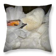 Swan Preening Throw Pillow