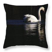 Swan Reflected Throw Pillow