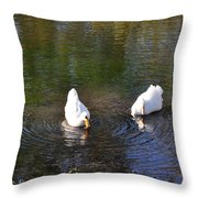 Swan Ripplle  Throw Pillow