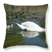 Swan Scenic Throw Pillow