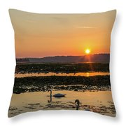 Swan Sun Throw Pillow