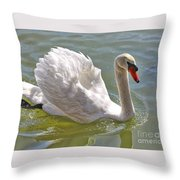 Swan Swimming By Throw Pillow
