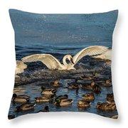 Swan Wings Reach Throw Pillow