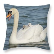 Mute Swan With Babies On Its Back Throw Pillow
