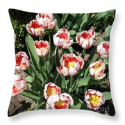 Swanhurst Tulips Throw Pillow
