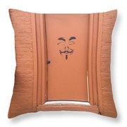 Swann Door Throw Pillow