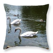 Swans And Ducks Throw Pillow