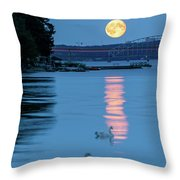 Swans And The Moonrise In Stockholm Throw Pillow