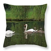 Swans At Two Months Throw Pillow