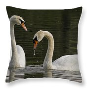 Swans Courtship Throw Pillow