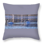 Swans In Winter Throw Pillow