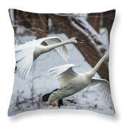 Swans Landing Throw Pillow