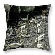 Swans On The Canal Throw Pillow