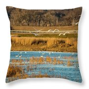 Swans Returning To The Roost At Riverlands 7r2_dsc3855_12202017 Throw Pillow
