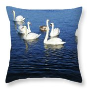 Swans Sligo Ireland Throw Pillow