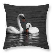 Swans Swimming Isolation Throw Pillow