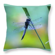 Swaying On A Stem  Throw Pillow