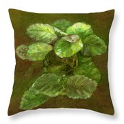 Swedish Ivy Throw Pillow