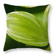 Sweeping Green Throw Pillow