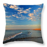 Sweeping Ocean View Throw Pillow