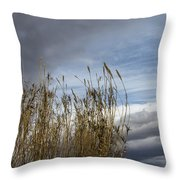 Sweeping The Clouds Away Throw Pillow
