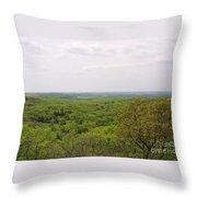 Sweeping Vista Throw Pillow