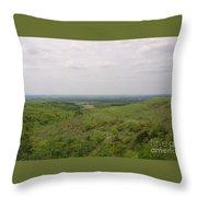 Sweeping Vista II Throw Pillow