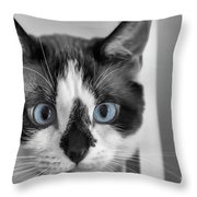 Sweet Blue Eyes Throw Pillow