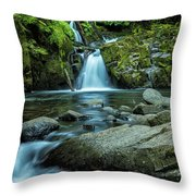 Sweet Creek Falls Throw Pillow