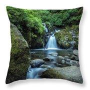 Sweet Creek Falls Vertical Throw Pillow