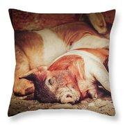 Sweet Dream Piglets Throw Pillow
