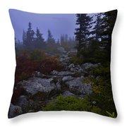 Sweet Dreams Throw Pillow by Lj Lambert